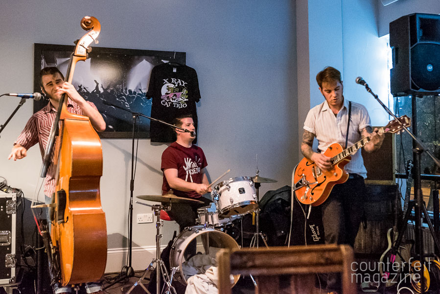 X-Ray Cat Trio